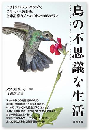 鳥の不思議な生活